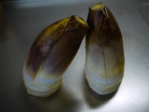 P1160044